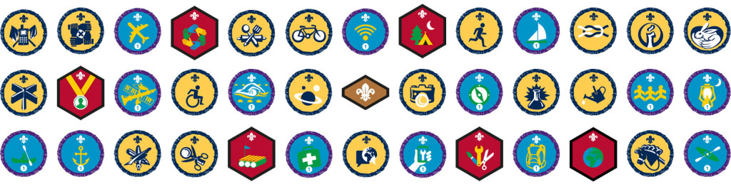 beavers-badges-collage